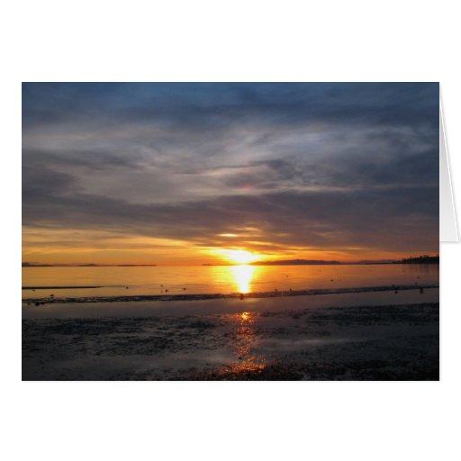 Tormenta de la puesta del sol felicitaciones