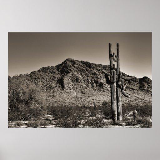 Tormenta del Saguaro Impresiones