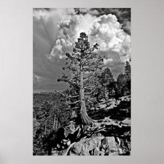 Tormenta el lago Tahoe del verano, Poster
