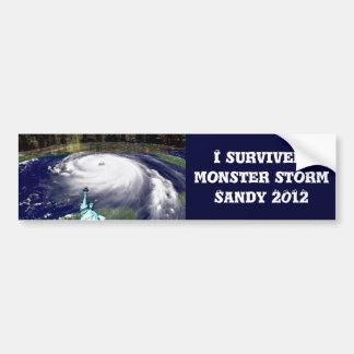 Tormenta estupenda Sandy 2012, ojo del storm_ Pegatina De Parachoque