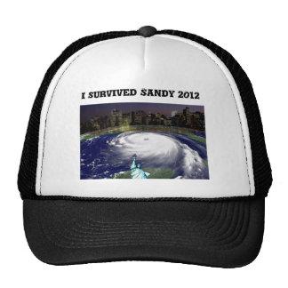 Tormenta estupenda Sandy 2012, ojo del storm_ Gorros Bordados