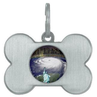 Tormenta estupenda Sandy 2012, ojo del storm_ Placa Mascota