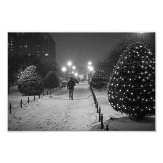 Tormenta mA Massachusetts de la nieve del jardín Cojinete