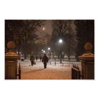 Tormenta mA Massachusetts de la nieve del jardín Fotografía