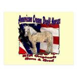 Torn Flag Cream Postcard
