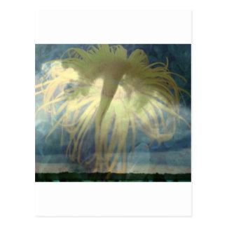 Tornado Inula Postcards