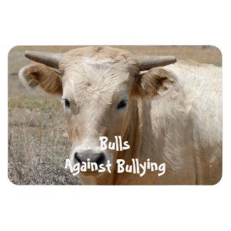 Toros contra - blanco - el Parenting del vaquero q Imanes Flexibles