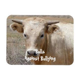 Toros contra - blanco - el Parenting del vaquero q Imanes Rectangulares