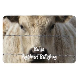 Toros contra - cerca - el Parenting del vaquero qu Imán Flexible