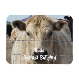 Toros contra - cerca - el Parenting del vaquero qu Iman Flexible