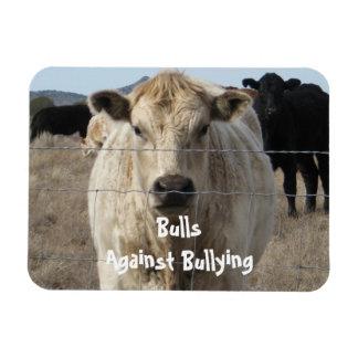 Toros contra - cercas - el Parenting del vaquero q Imán Flexible