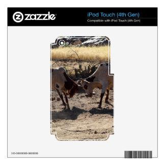 Toros que luchan calcomanías para iPod touch 4G
