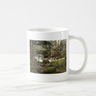 Torrent Walk I, Dolgelly (i.e. Dolgellau), Wales r Classic White Coffee Mug