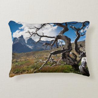 Torres del Paine National Park, fire damaged trees Decorative Pillow