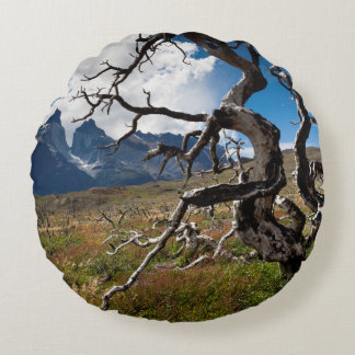 Torres del Paine National Park, fire damaged trees Round Pillow
