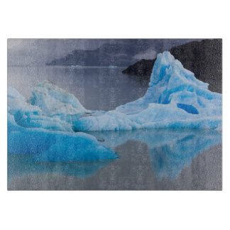 Torres del Paine National Park, Glacial ice Cutting Boards