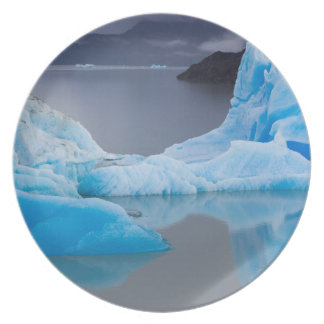 Torres del Paine National Park, Glacial ice Party Plate