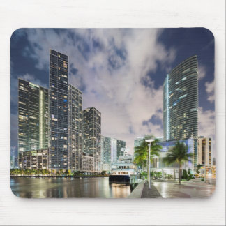 Torres iluminadas en la costa del río de Miami Tapetes De Ratones