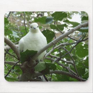 Torres Strait Pigeon Mousepad