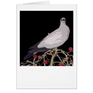Torresian Imperial Pigeon card