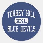 Torrey Hill Blue Devils Middle Fenton Classic Round Sticker