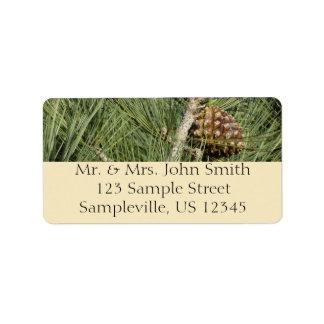 Torrey Pine Closeup Label
