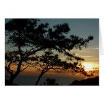 Torrey Pine Sunset Card