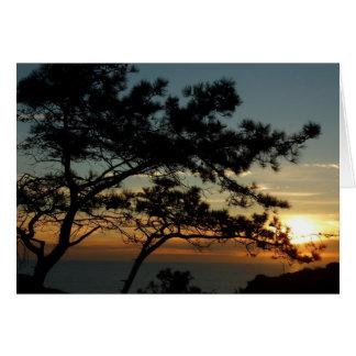 Torrey Pine Sunset I California Landscape Card