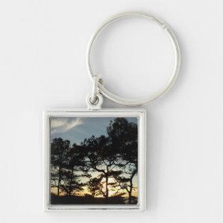 Torrey Pine Sunset II California Landscape Keychain