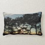 Torrey Pine Sunset II California Landscape Lumbar Pillow