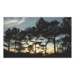 Torrey Pine Sunset II California Landscape Rectangular Sticker