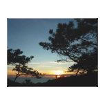 Torrey Pine Sunset III California Landscape Canvas Print
