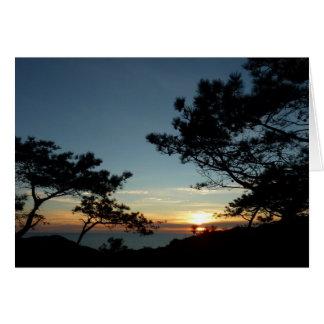 Torrey Pine Sunset III California Landscape Card