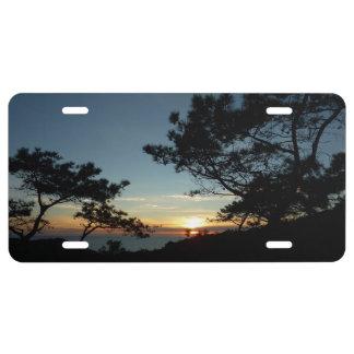 Torrey Pine Sunset III California Landscape License Plate