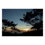 Torrey Pine Sunset III California Landscape Perfect Poster