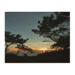 Torrey Pine Sunset III California Landscape Wood Wall Art