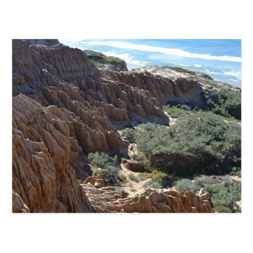 Torrey Pines Cliffs 1 Postcard