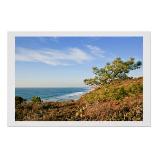 Torrey Pines Reserve Poster
