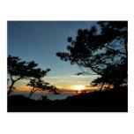 Torrey Pines Sunset Postcard