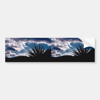 Torry yucca car bumper sticker