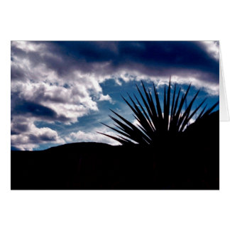 Torry yucca greeting card