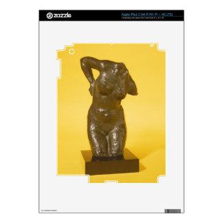 Torso (bronze) skin for iPad 3