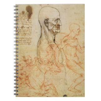 Torso de un hombre en perfil, la cabeza ajustada p libros de apuntes