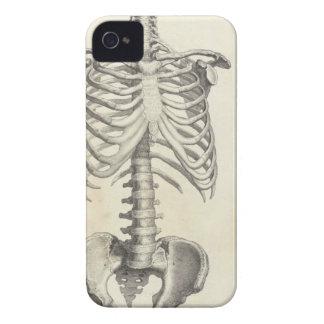 Torso esquelético iPhone 4 Case-Mate cárcasas