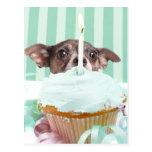 Torta de cumpleaños de la chihuahua tarjetas postales