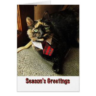 Tortie Season's Greeting Card, Starring Binga Card