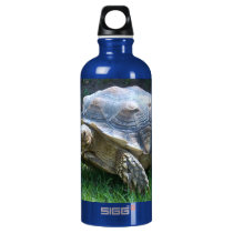 Tortoise Aluminum Water Bottle