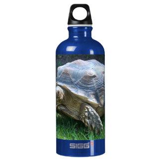 Tortoise Aluminum Water Bottle