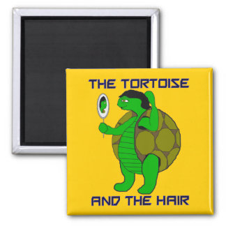 Tortoise and the Hair Magnet