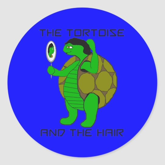 Tortoise and the Hair Stickers